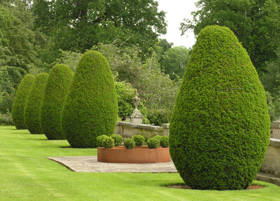 Buxus Ring 200cm at Mellerstain © Andrea Geile 2007. Photo: © M. Wolchover