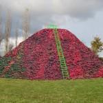 Vitis Mound © Andrea Geile 2010
