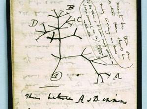 Darwin. El viatge d'un naturalista