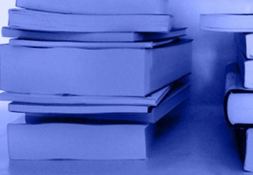 """""""Quadern de llibres"""" de desembre"""