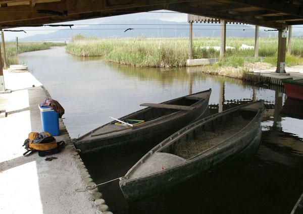 Embarcador de l'Encanyissada, delta de l'Ebre©Eloïsa Matheu