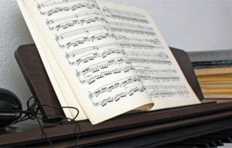 El cerebro y la música: buscando reglas universales