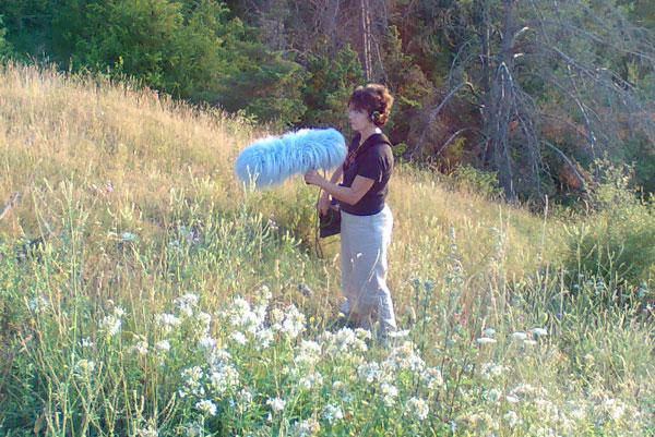 Grabando insectos en el Pirineo © Eloïsa Matheu